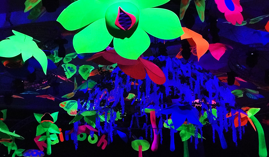 flower power fluo